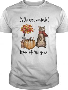 Cat and pumpkin its the most wonderful time of the year shirt