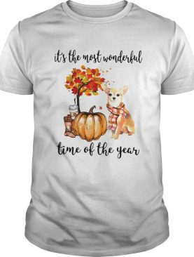 Chihuahua its the most wonderful time of the year shirt