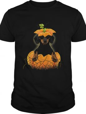Dachshund Pumpkin Halloween For Men Woman shirt