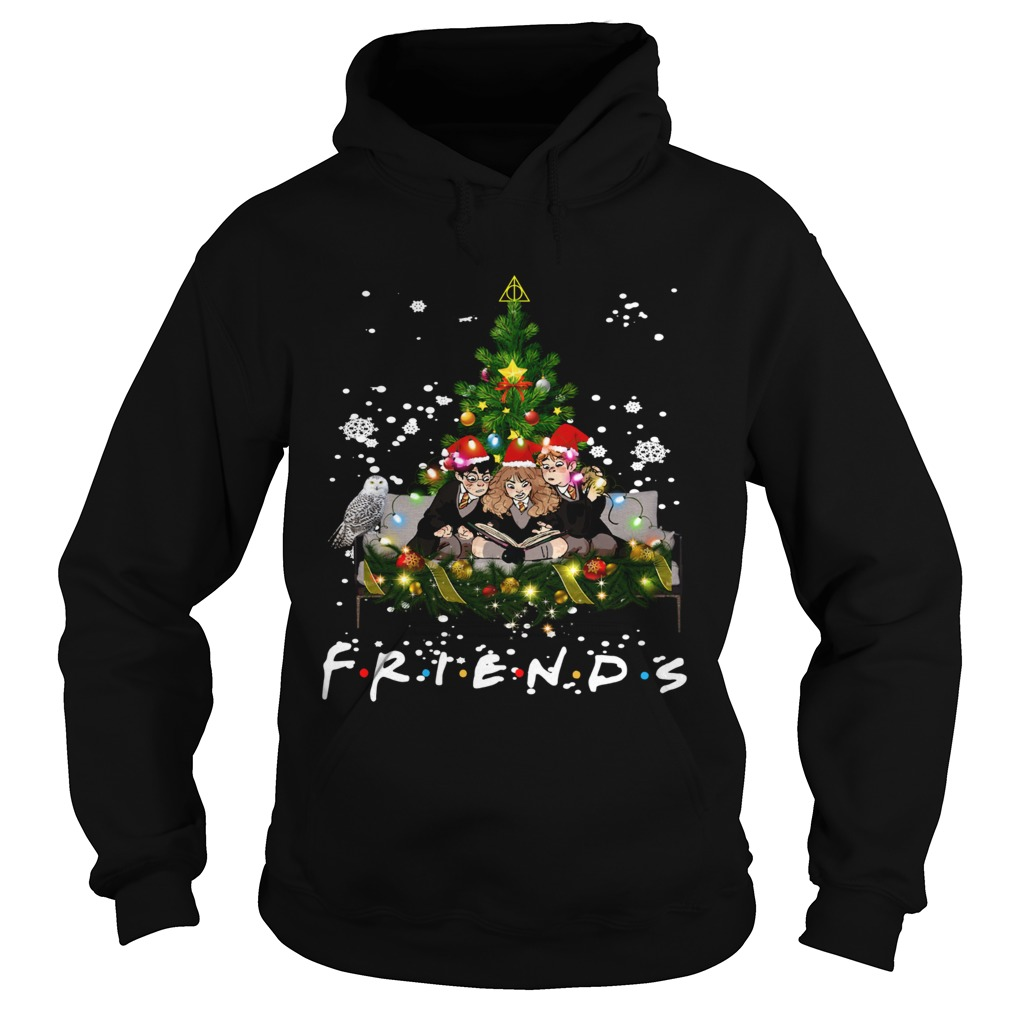 Friends Harry Potter Hermione Ron Christmas  Hoodie