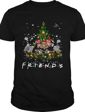 Friends Harry Potter Hermione Ron Christmas shirt
