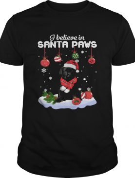I believe in Santa Paws Christmas shirt