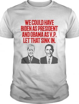 We could have Biden as President and Obama as VP Let that sink in shirt