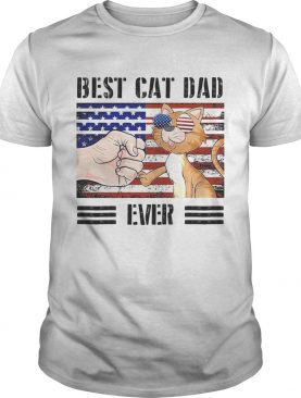 Best cat dad ever American flag veteran Independence Day vintage shirt